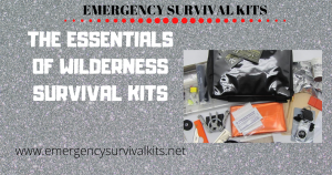 The Essentials of Wilderness Survival Kits