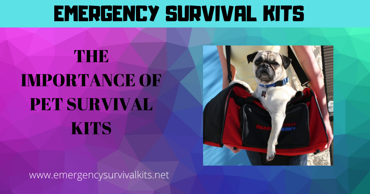 The Importance of Pet Survival Kits